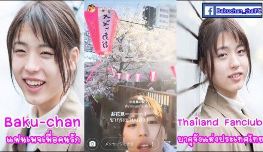 井手上獏 お花見 2019 บาคุจังชมซากุระ (Thai Sub)